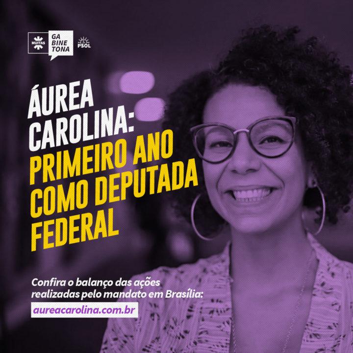 Primeiro ano como deputada federal: balanço das ações realizadas pelo mandato em Brasília