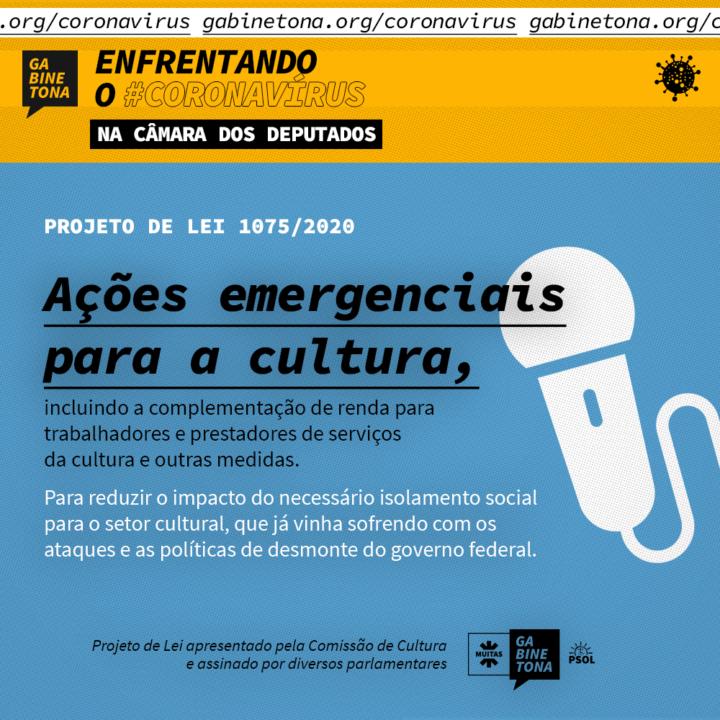 Ações emergenciais para a cultura: projeto de lei propõe complementação de renda e outras medidas
