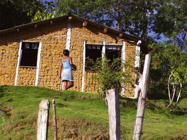 Áurea Carolina pede informações ao INCRA sobre processos de licenciamento ambiental em território quilombola