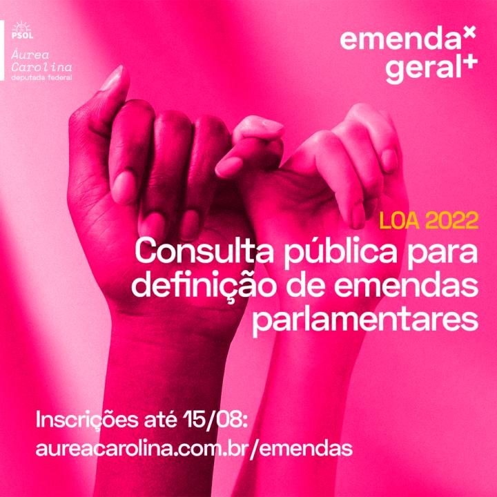 Áurea Carolina abre consulta pública para destinação de emendas parlamentares